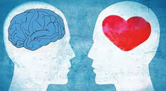 Emotional Intelligence: Do you have enough to be successful?