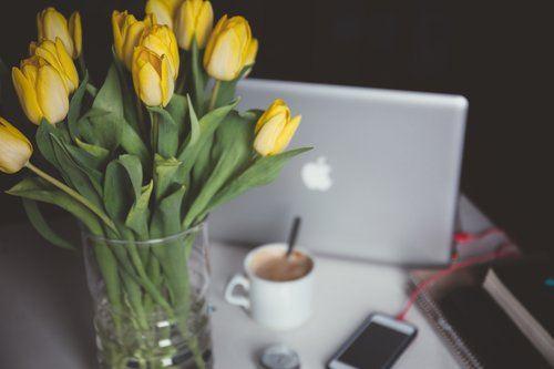 Resume & LinkedIn Tips